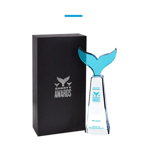 Levy Recognition Custom Awards - Shorty Awards